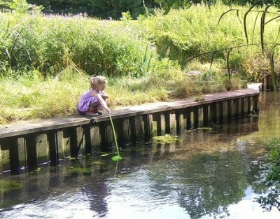 Pond dipping with Children