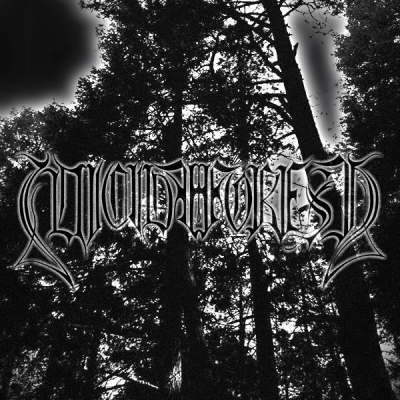 "SUICIDE FOREST releases a new album  ""Descend into Despair"""