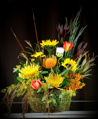 harvest, fall, sunflower, wheat