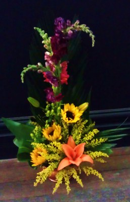 sunflower, snapdragon, fall, autumn