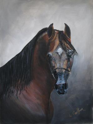 Horse $450