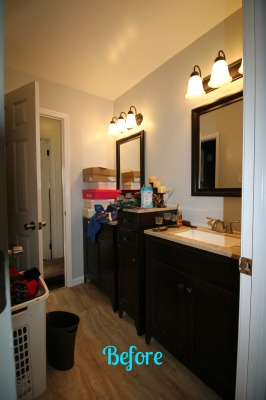 Before - Master Bathroom