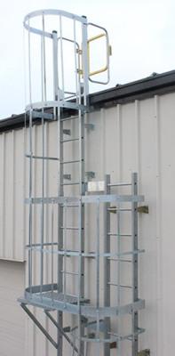 Industrial Cat ladder