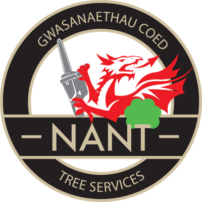 professional tree care tree felling tree surgery gwynedd, conwy, anglesey north wales