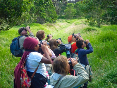 Teaching Change Program, Hakalau Forest  National Wildlife Refuge