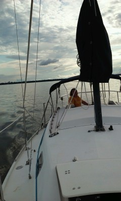 The Sail Boat
