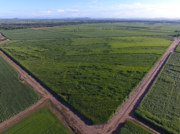 Drones in Agriculture - Soakage Maps