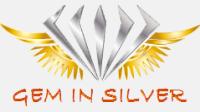 Gem In Silver