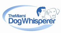 The Miami Dog Whisperer, Dog Training, Richard Heinz, Miami Dog Whisperer, Dog trainer, dog behaviorist, dog trainer in miami, miami dog training, doral dog training, dog training expert, best dog trainer, aggression trainer, famous dog trainer, dog whisperer, protection K9 training, protection dog training, family protection dog, personal protection dog, german shepherd, dog training in miami, dog trainer in miami, doral dog trainer, coral gables dog trainer, miami beach dog trainer, dog trianer to the stars, positive dog training, obedience dog training, free evaluation, dog trainer, miami dog whisperer, dog force 1, dog training videos, dog training online, aggressive dog training, remote collar training, positive dog training, electric collar dog training, miami dog training, doral dog training, coral gables dog training, pinecrest dog training, obedience training, potty training, puppy training, affordable dog training, dog training in my area, service dog training, service dog vest, service dog, therapy dog training, therapy dog