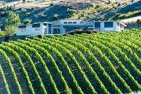 Cromwell, Bannockburn, Stewart Town, Wine, New Zealand, Export, Functions, Pinot Noir