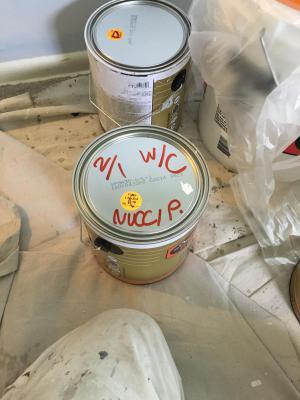 Nuci Painting