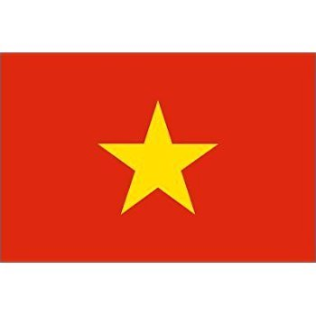 Authentication Services for Hainoi Vietnam: FBI Check, Background Check, diploma and TEFL for UK/US