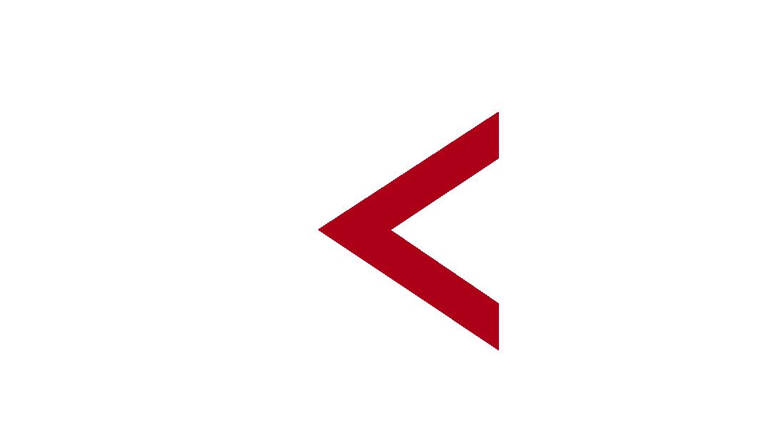 Alexander Koreiba Racing Logo