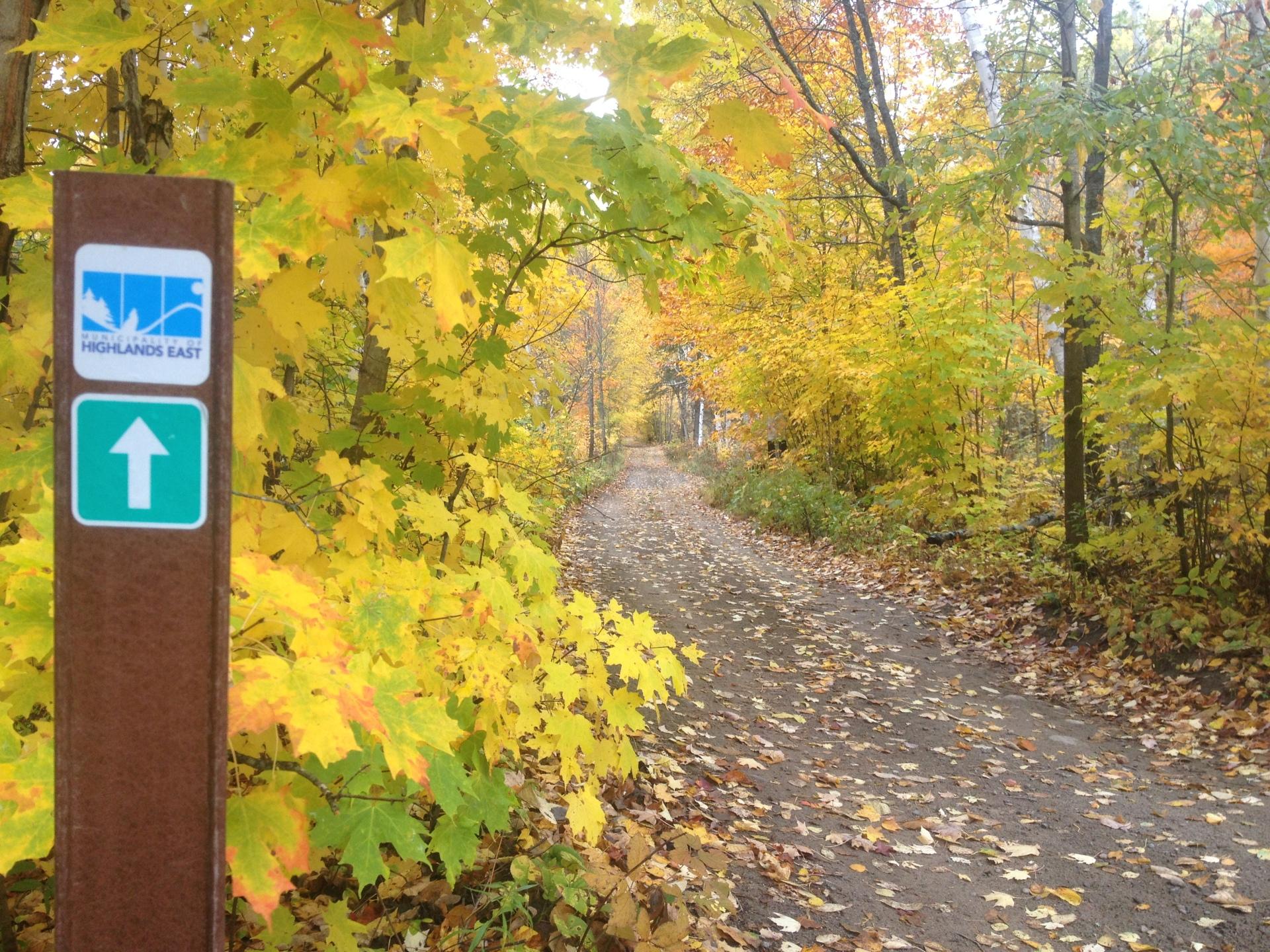 Snowmobile, ATV, Hike or bike the trails