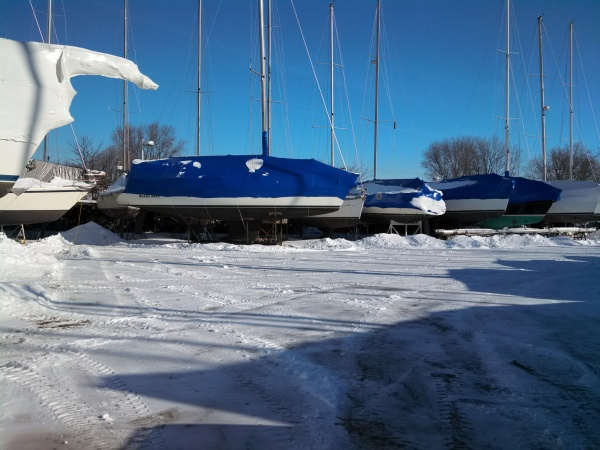 Winter in the yard