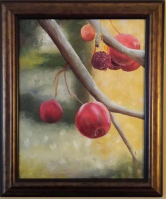 Missouri Cherry