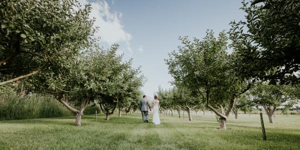 Justine + Ryan, Quiet Meadow Farm