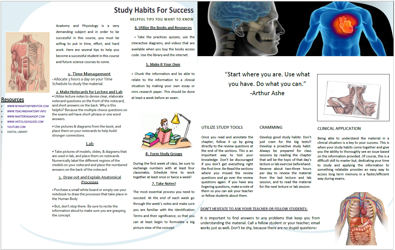 AMY-2A Study Tips Booklet (Page 2)