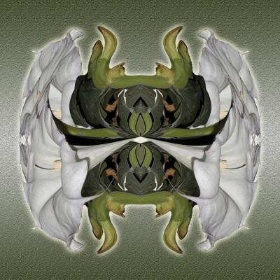 Sacred Troll