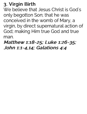 3. Virgin Birth