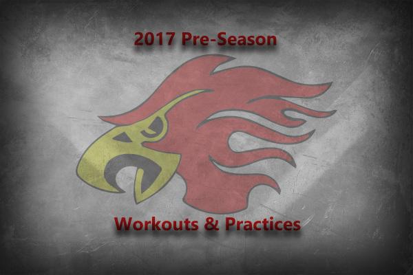 Durham Firebirds - 2016 Season Photos