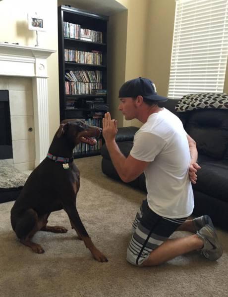 Doberman, Big Dog