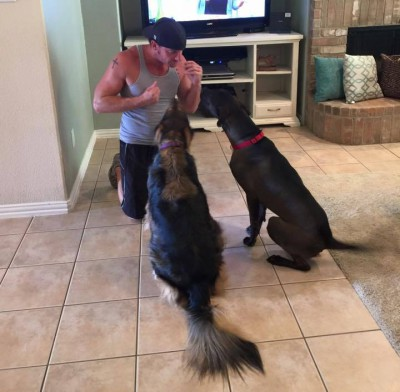 In-Home Dog Training Session