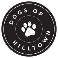Street Dogs, Dogs of Hilltown