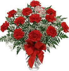 Dozen Red Carnations $54.99