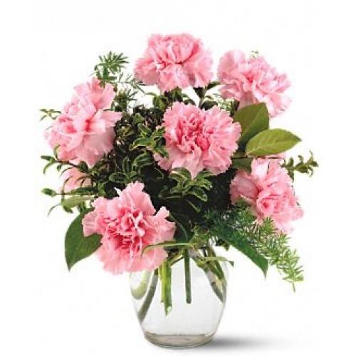 Pink Carnation 1/2 $36.99