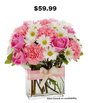$59.99 Pink Past