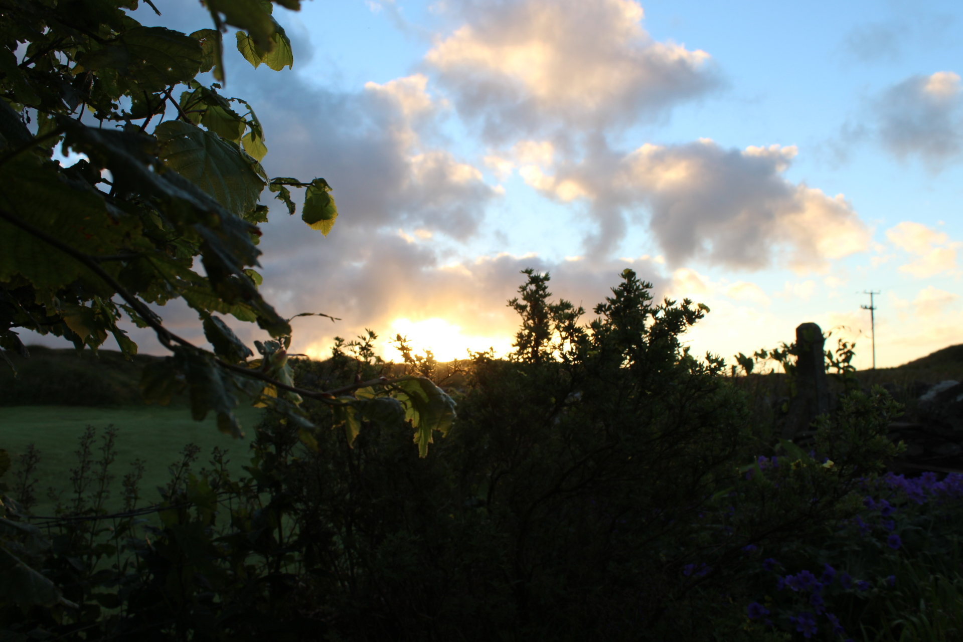 Morning at Dunollie, Islay Wines!