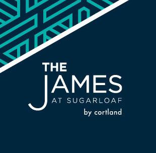 THE JAMES // BRANDING