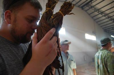 Aged tobacco at customer factory tour in Nicaragua