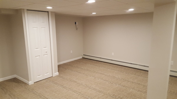 BASEMENT RENOVATION WITH UTILITY CLOSET