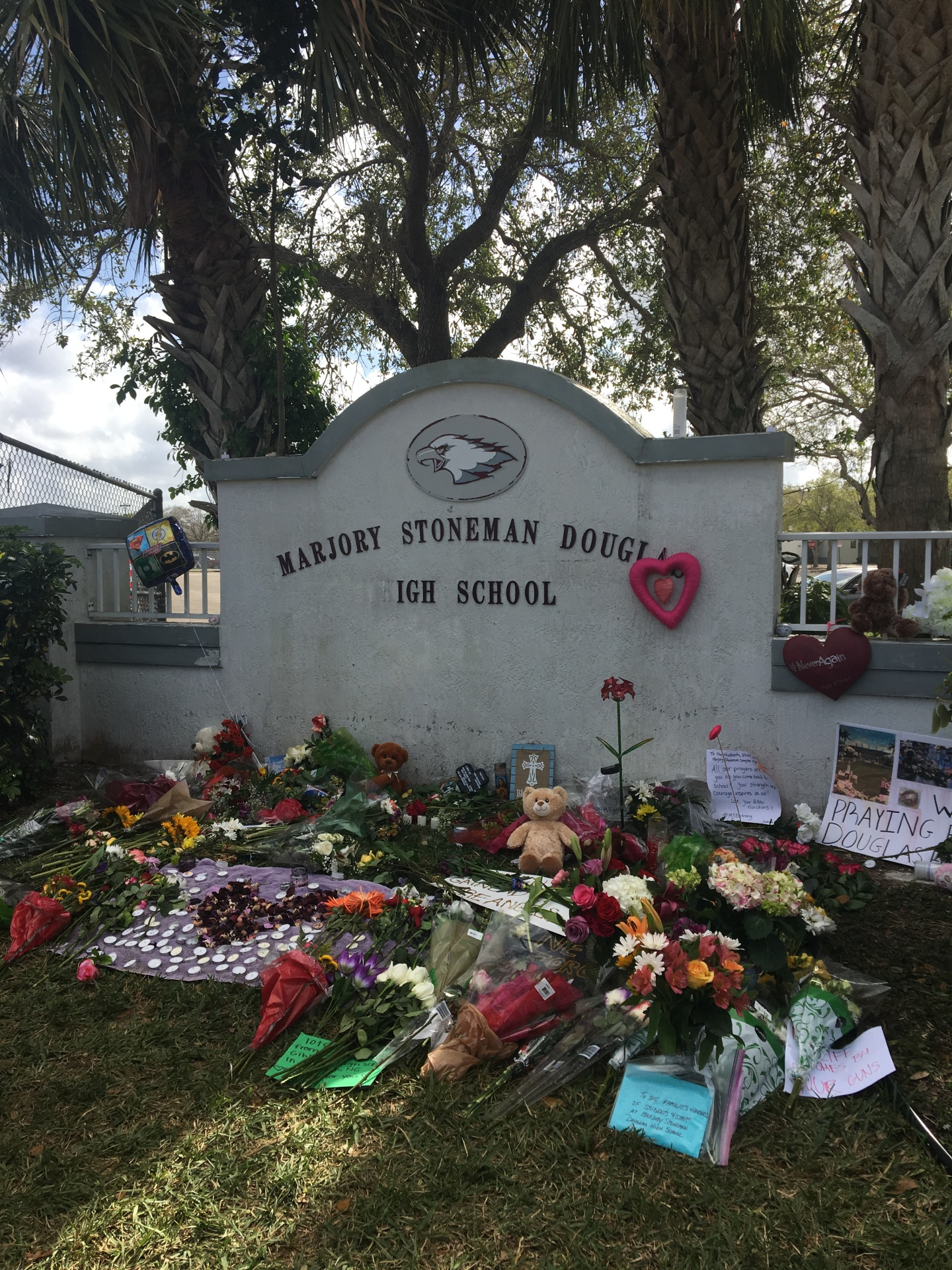 Valentine's Day Massacre at MSD Leaves 17 Dead and Millions Fighting for Gun Control