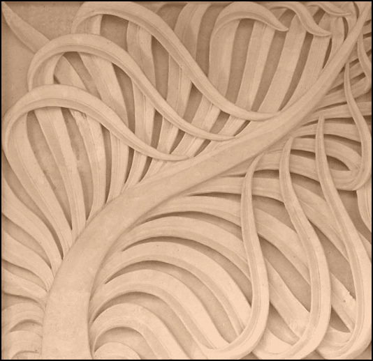 Folded Frond