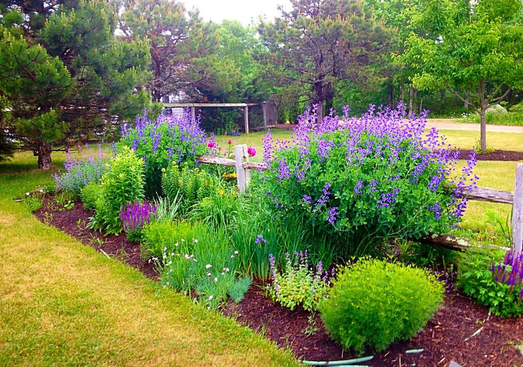 Numerous Perennial Gardens