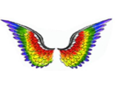SHH Wings