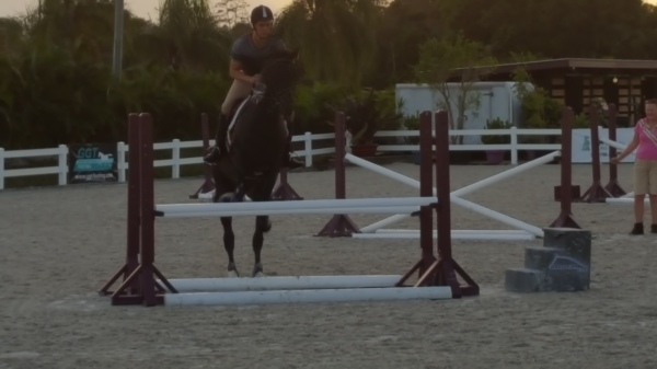 With her over 30 years of experience riding jumpers and dressage horses Corine rstablished a wide network of excellent riders in both disciplines.We can help you find the best riders .