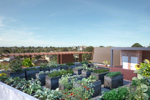 Roof Top Vegetable Garden   Sydney 3D Rendering