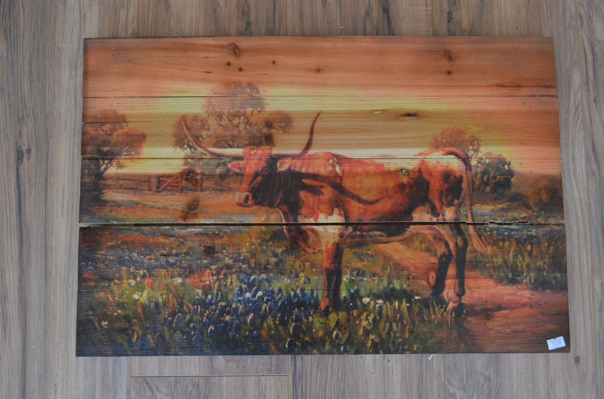 Longhorn Plaque-$21.99