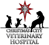 CHristmas City Veterinary Hospital