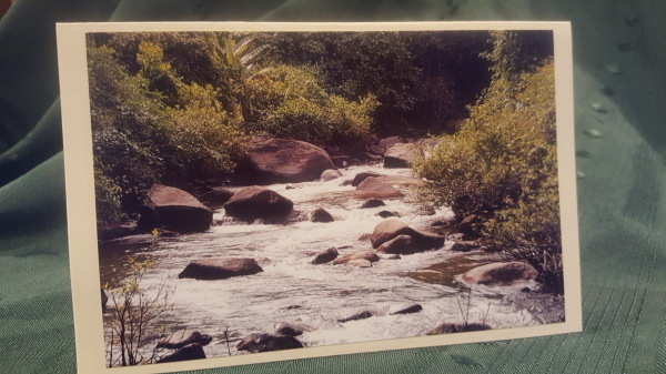 #7 Burma River