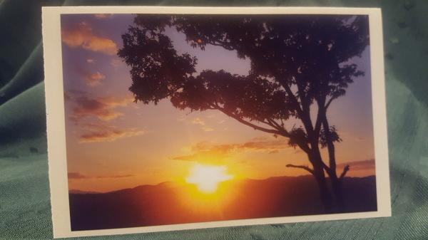 #8 First Sunset