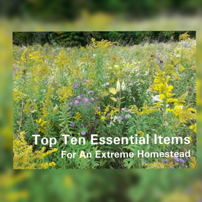 Top Ten Essential Items For An Extreme Homesteading Woman