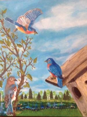 Bluebirds' Arrival