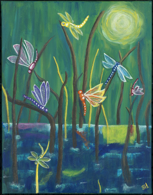Dragonflies Confab