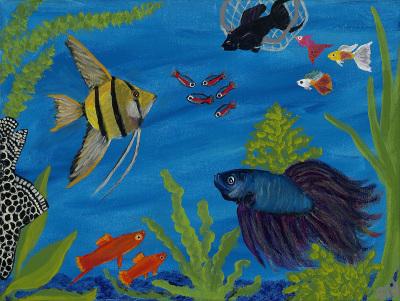 Aquarium Residents