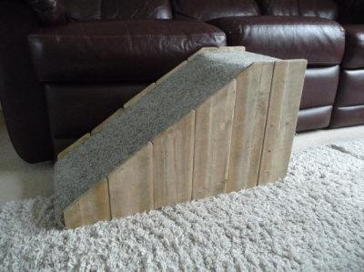 40cm Doggy Ramp